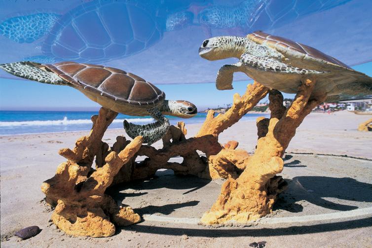 TURTLE REEF COFFEE TABLE - Sea turtle coffee table