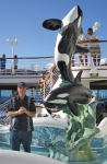 ORCA SEAS FOUNTAIN