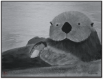 Sea Otter with Abalone