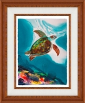 Coral Turtle